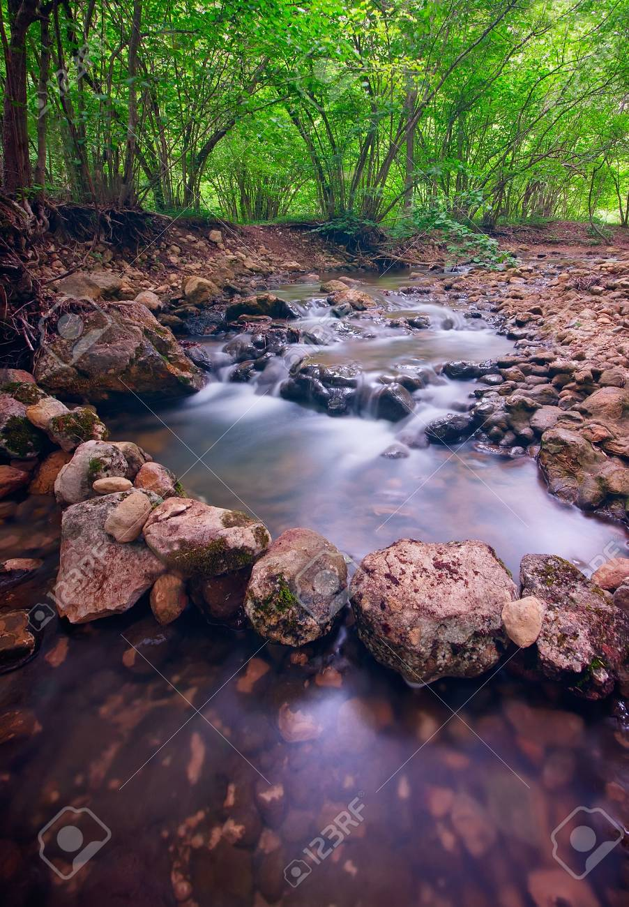 Mountain forest river with rapids Stock Photo - 13615661