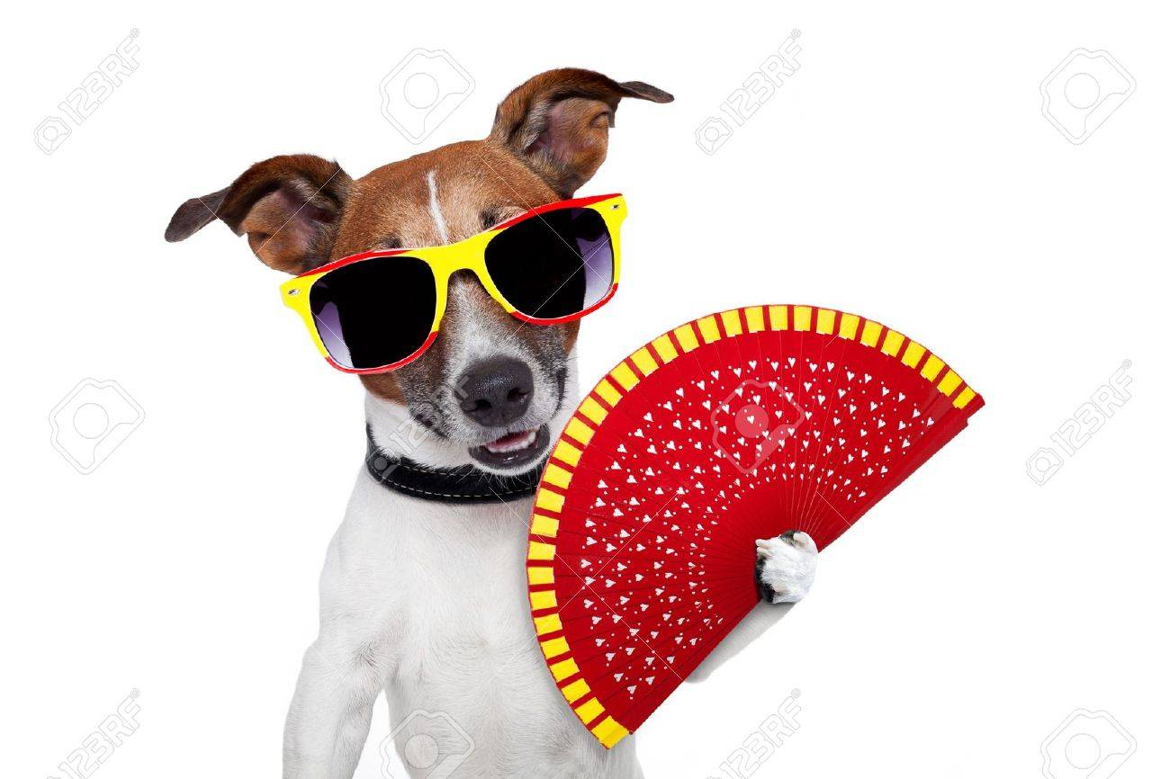 spanish dog with a red hand fan Stock Photo - 14355373