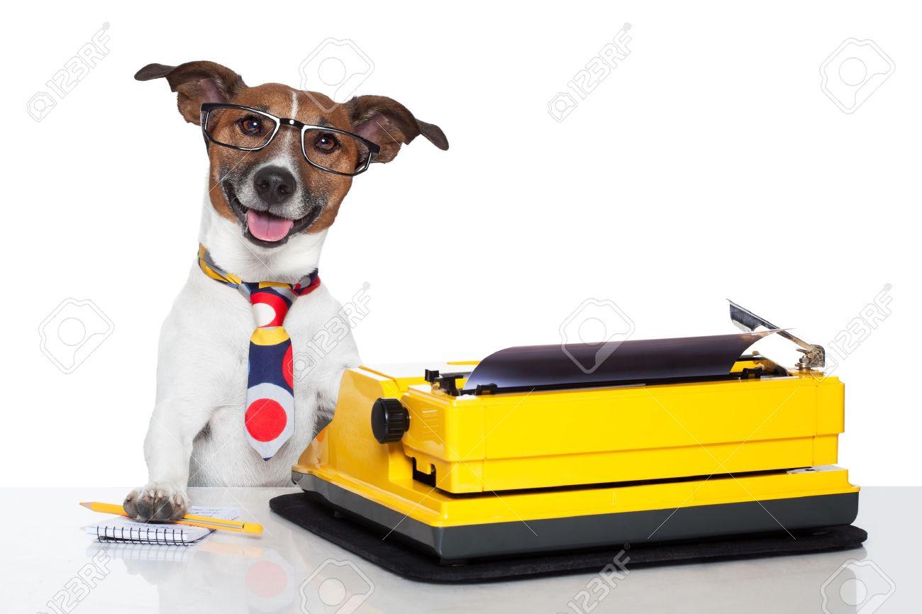 business dog typewriter tie glasses Stock Photo - 15071727