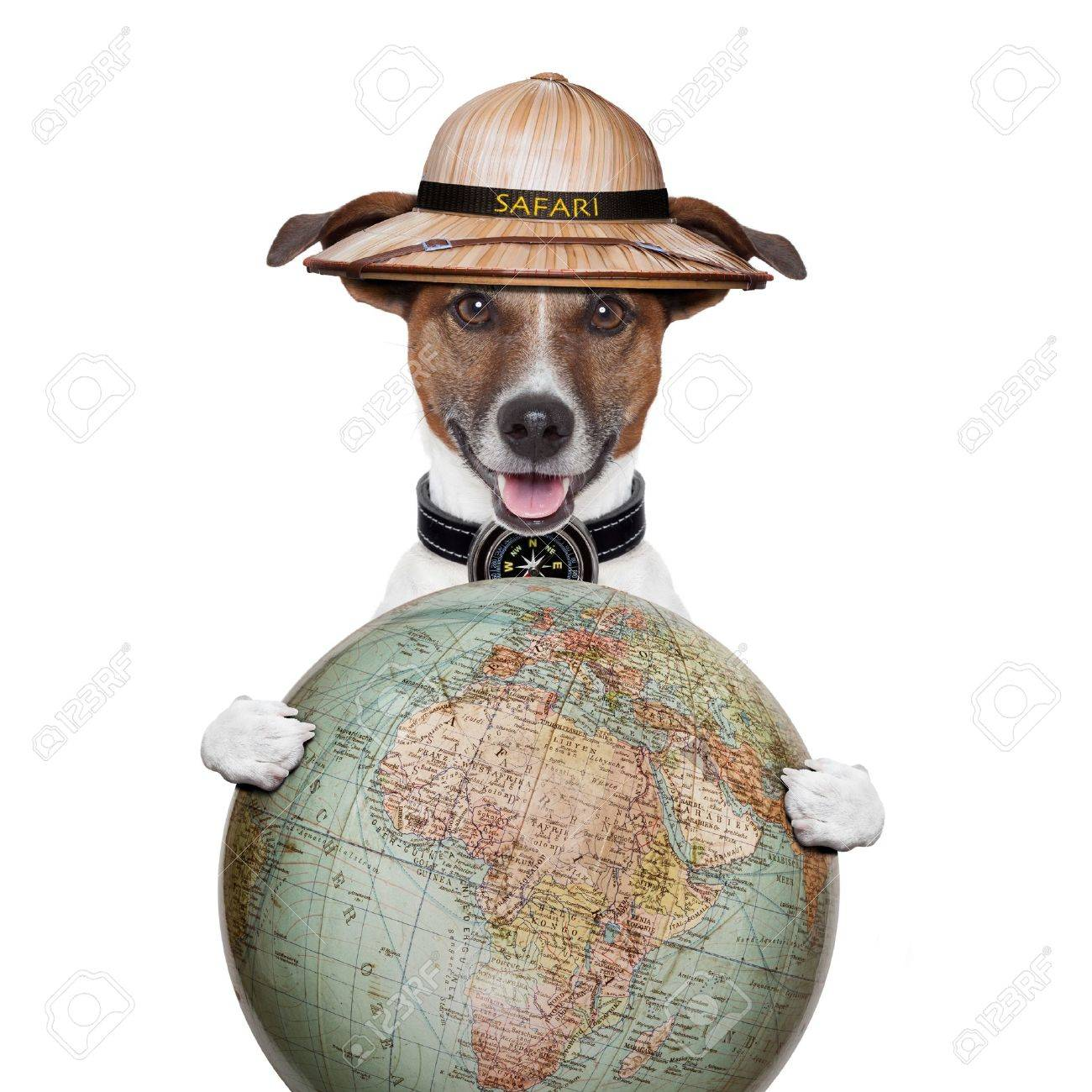 travel globe compass dog safari explorer Stock Photo - 15694842