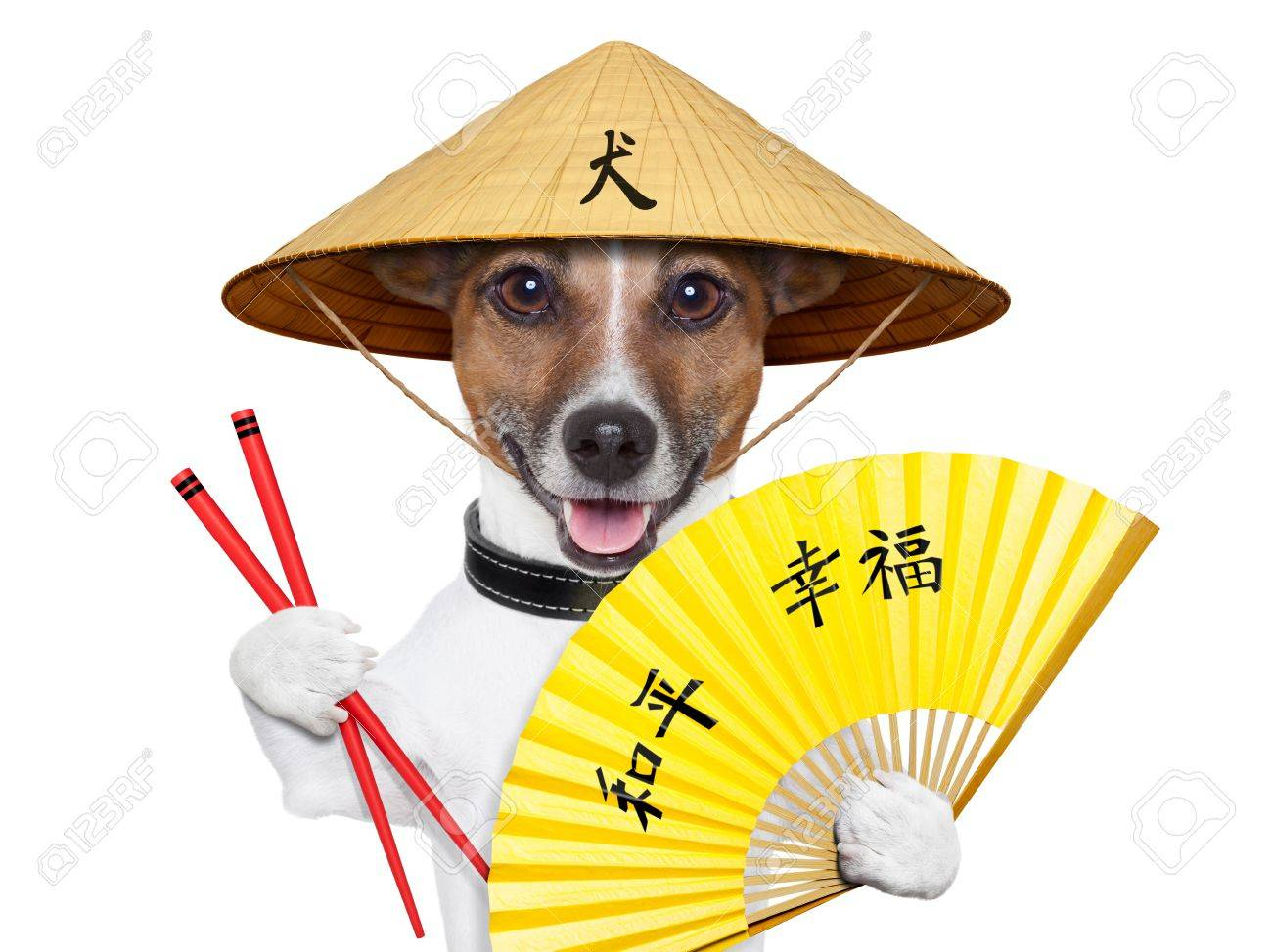 asian dog with hand fan and chopsticks Stock Photo - 19294022