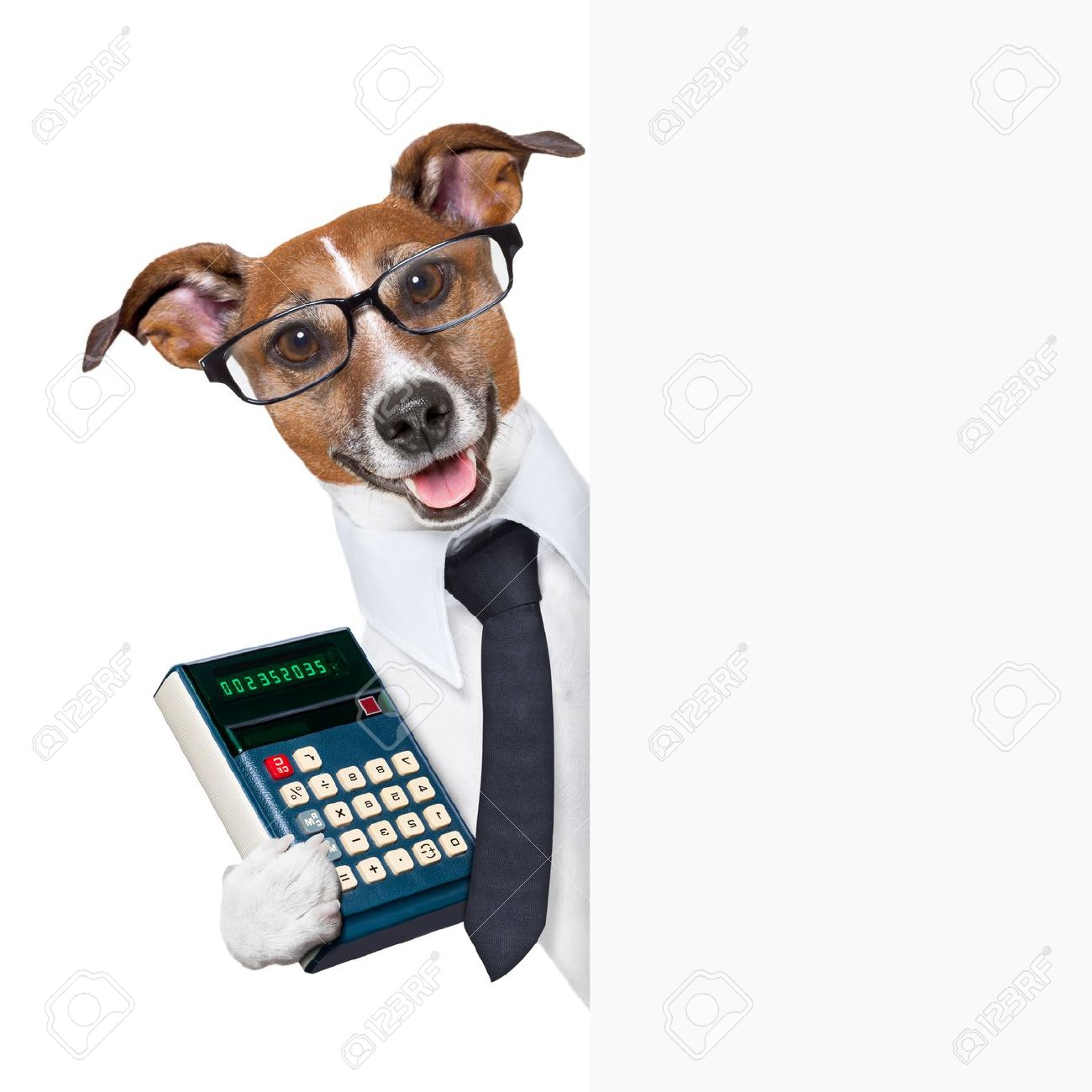 accountant dog behind blank page wearing a suit Stock Photo - 20102692