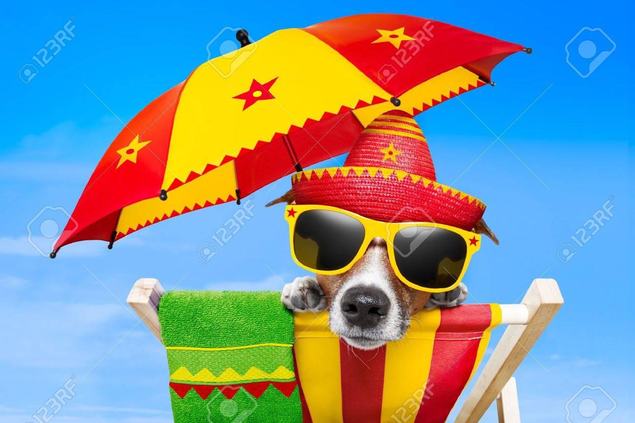 Sous Mexicain En Chien Chaise Détente Longue Sur Parapluie Vacances Une De Un KJ31lFTc