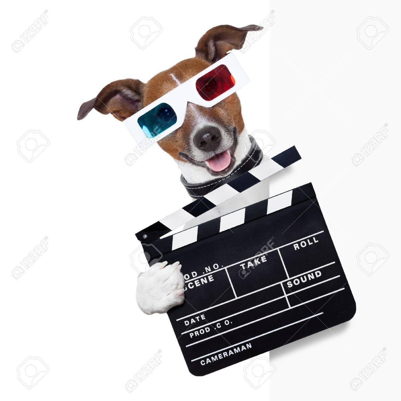 clapper cinema dog behind white banner Stock Photo - 21886482