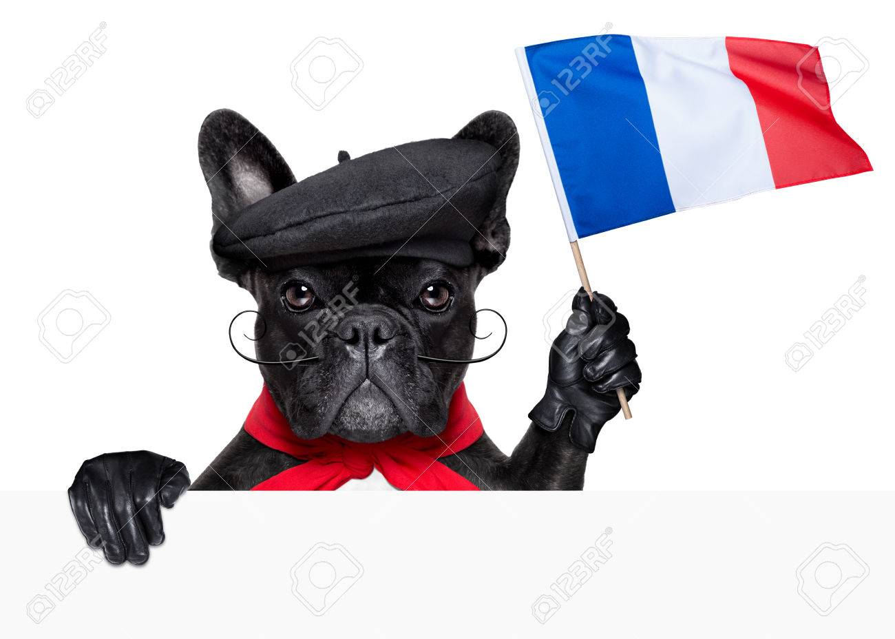 french flag images u0026 stock pictures royalty free french flag