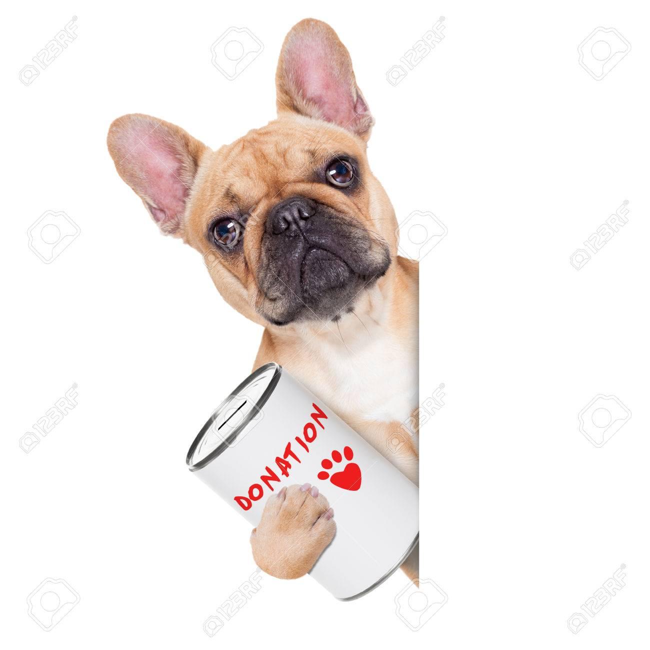 Image result for Hond met geld