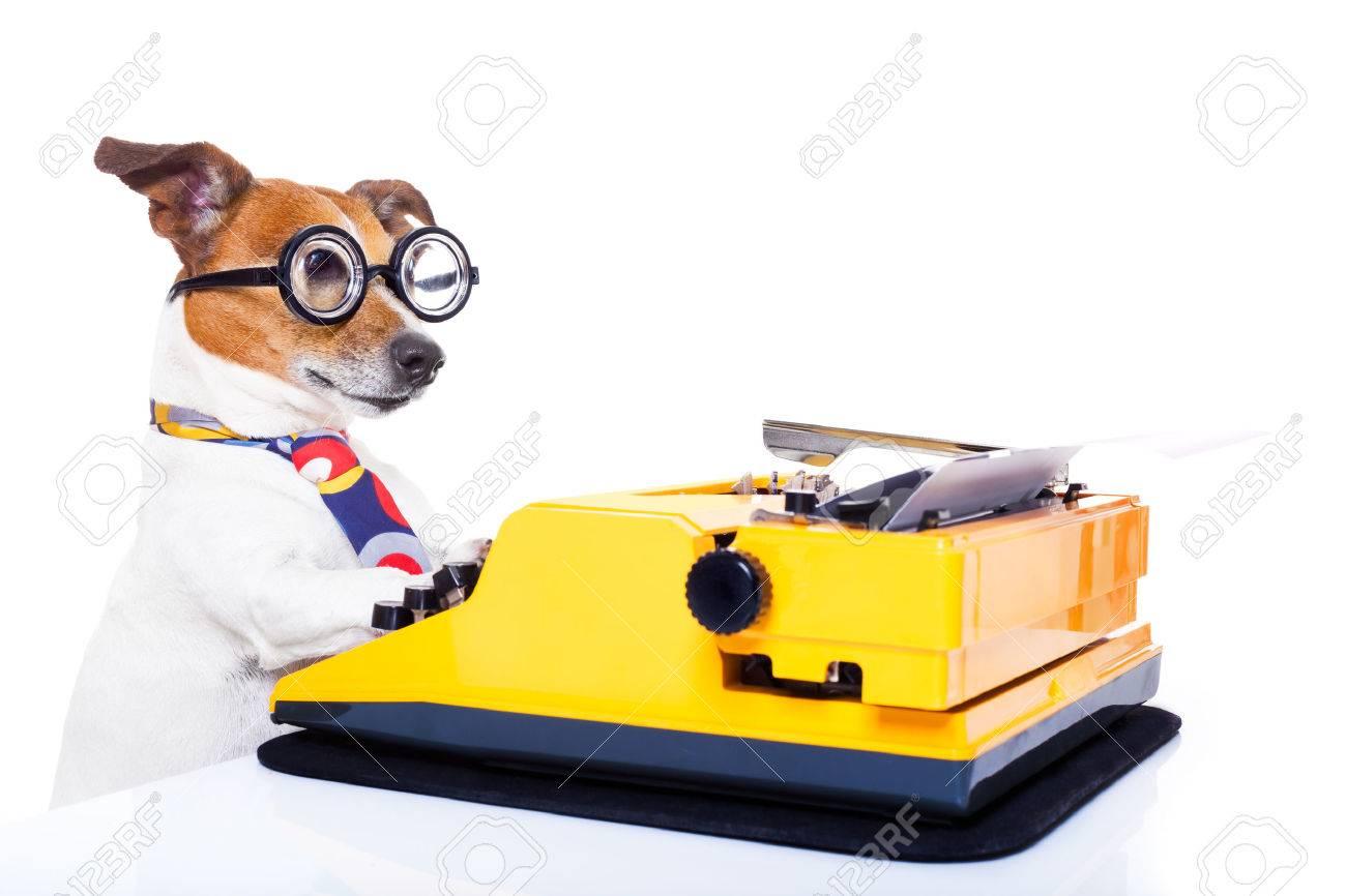 Background image 8841 - Writer Jack Russell Secretary Dog Typing On A Typewriter Keyboard Isolated On White Background