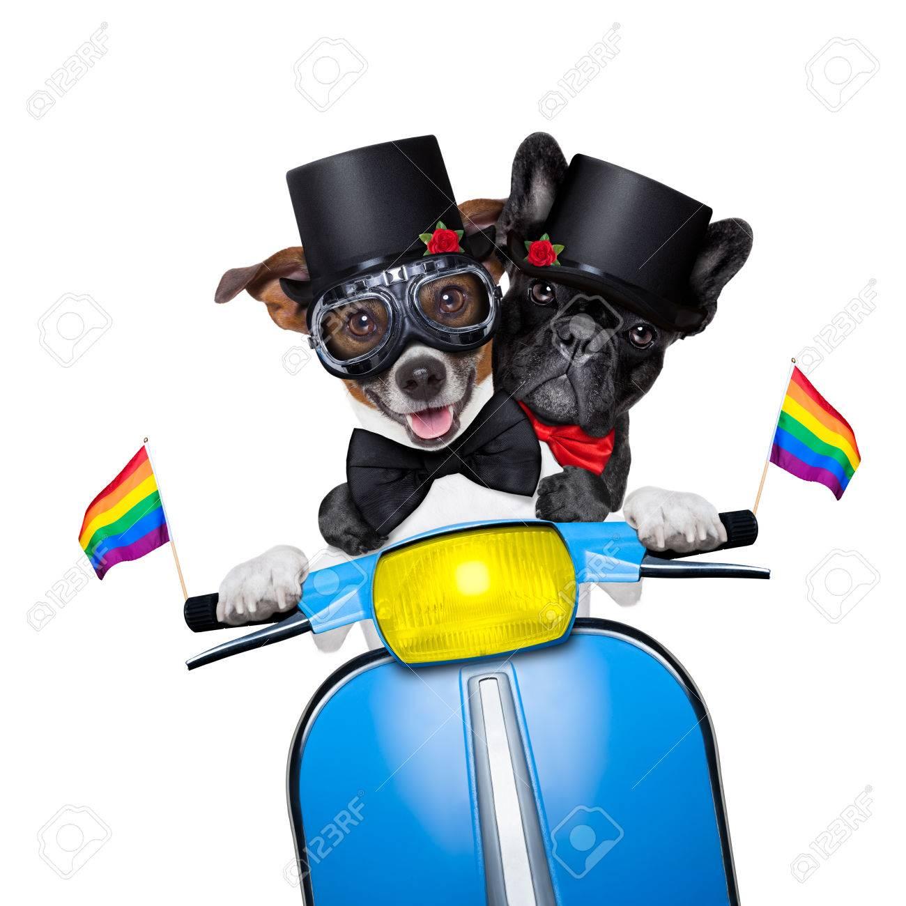 Sex auf motorrad