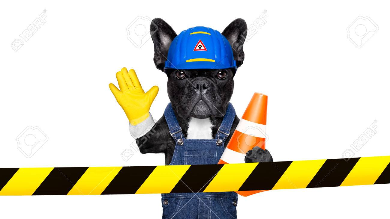 worker  dog with helmet  behind warning tape ,work in progress, and stop gesture, , isolated on white background Stock Photo - 43517865