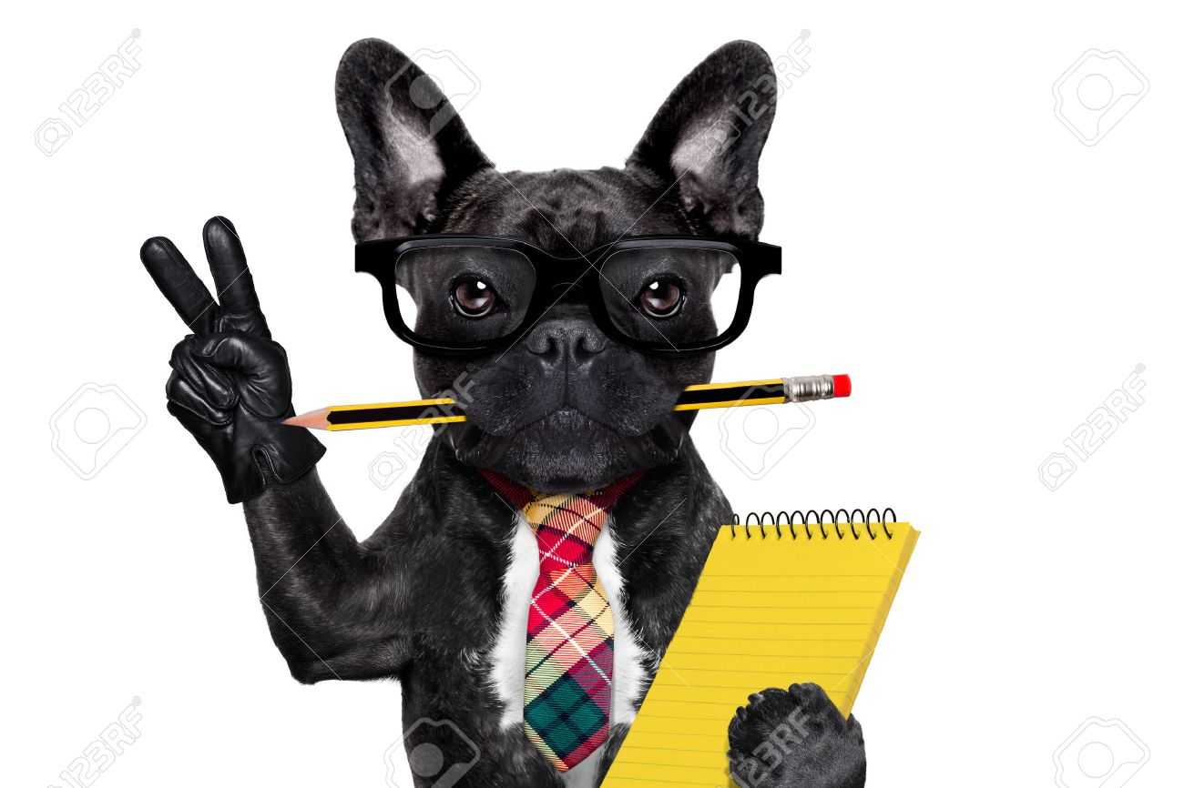 office businessman french bulldog dog with pen or pencil in mouth holding a  notepad and   peace or victory fingers isolated on white background Stock Photo - 43805968