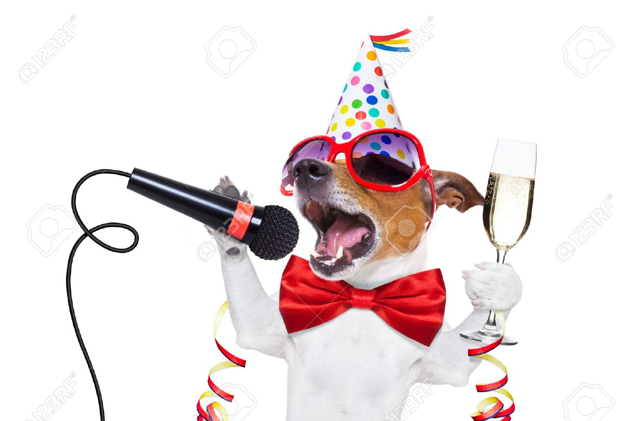 jack russell dog celebrating new years eve with champagne and singing karaoke with a microphone, isolated on white background Stock Photo - 46576827