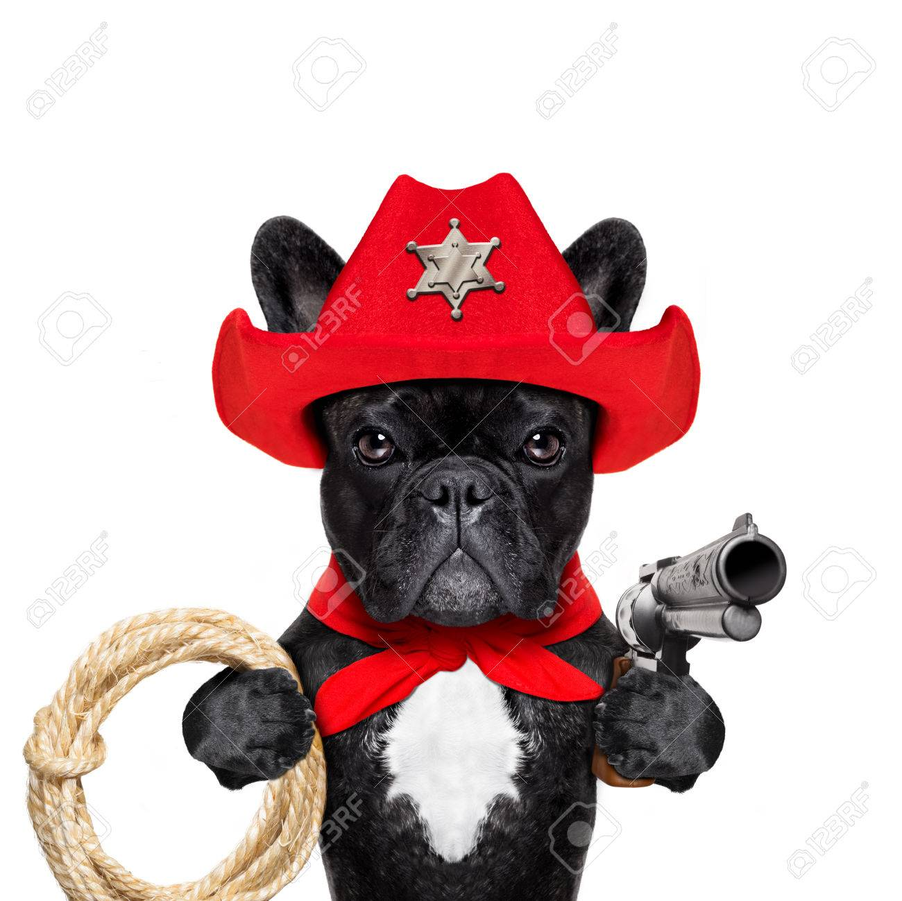 Western Cowboy Sheriff French Bulldog Dog With Rope Red Scarf