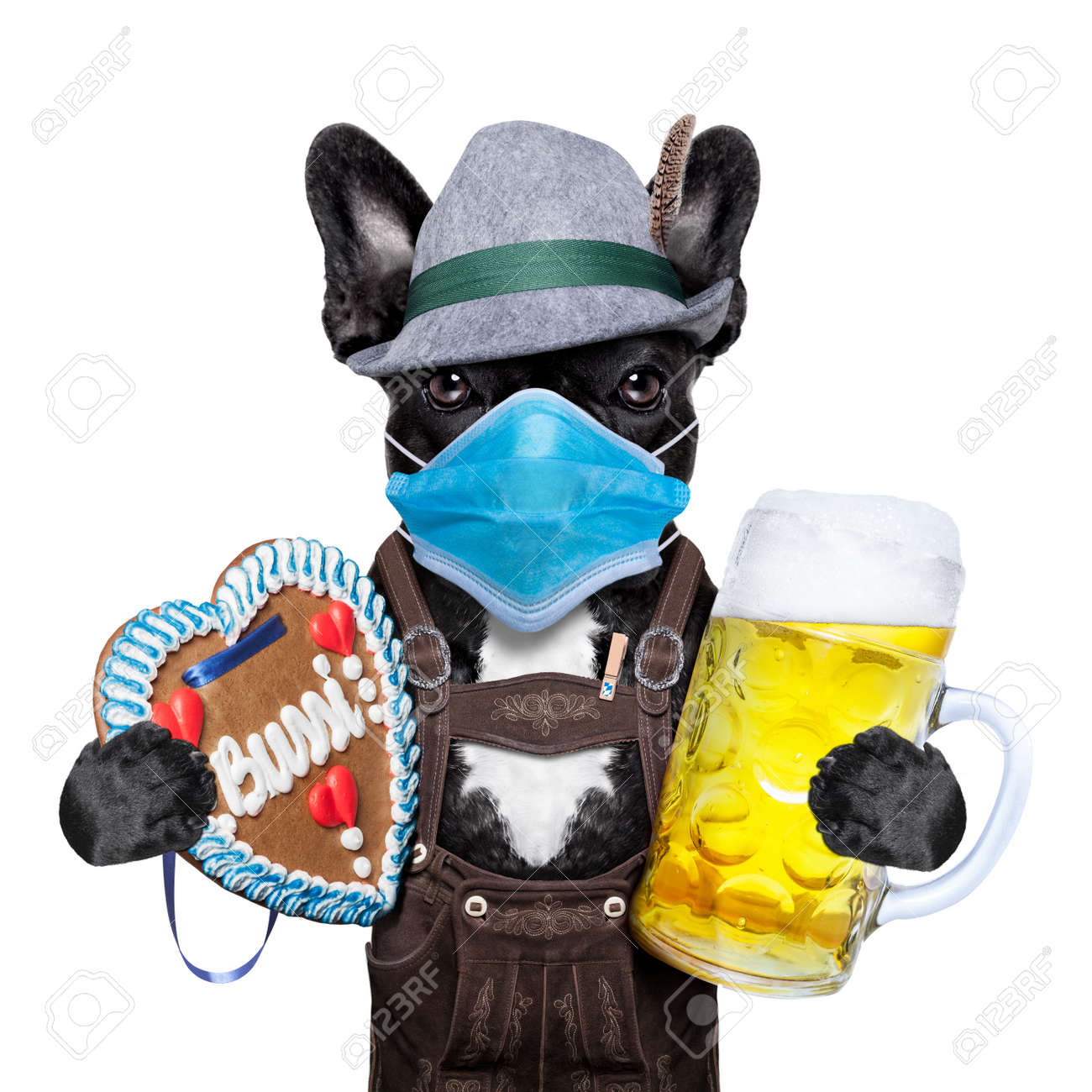 bavarian german dog with beer mug and gingerbread heart, canceled celebration festival in munich and wearing face mask - 156457949