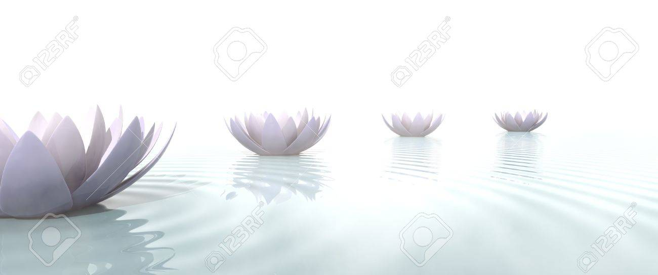 Zen Path Drawed With Lotus Flowers On The Water Stock Photo Picture