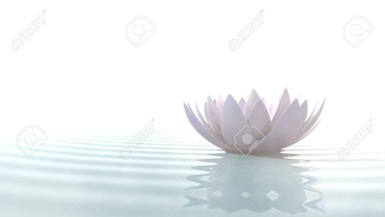 Zen Lotus Flower In Water Illuminated By Daylight On White