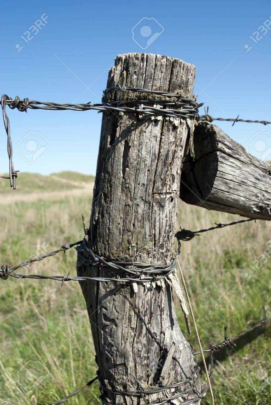 Picture of: Old Wooden Fence Post Stock Photo Picture And Royalty Free Image Image 9736032