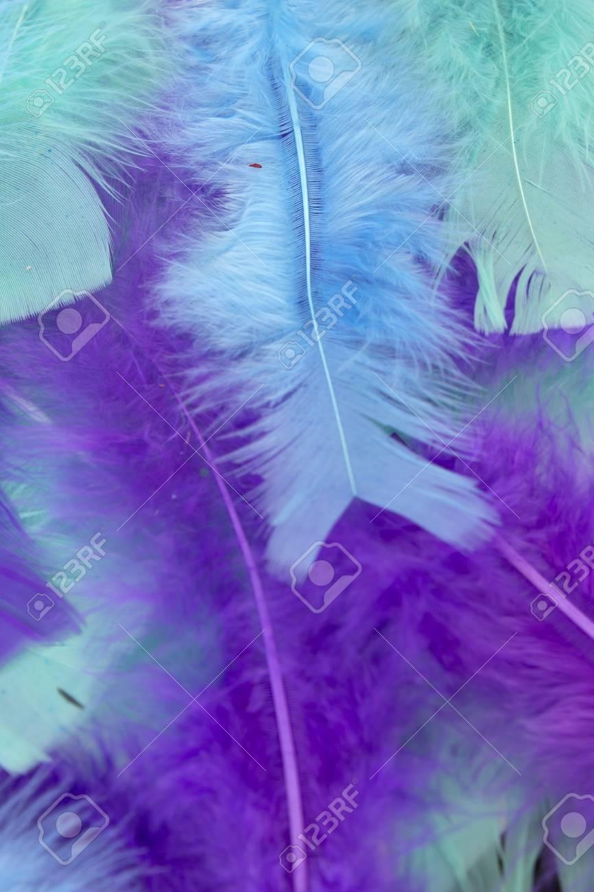 Questa è Una Fotografia Di Sfondo Di Piume Artigianali Blu Verde E Viola