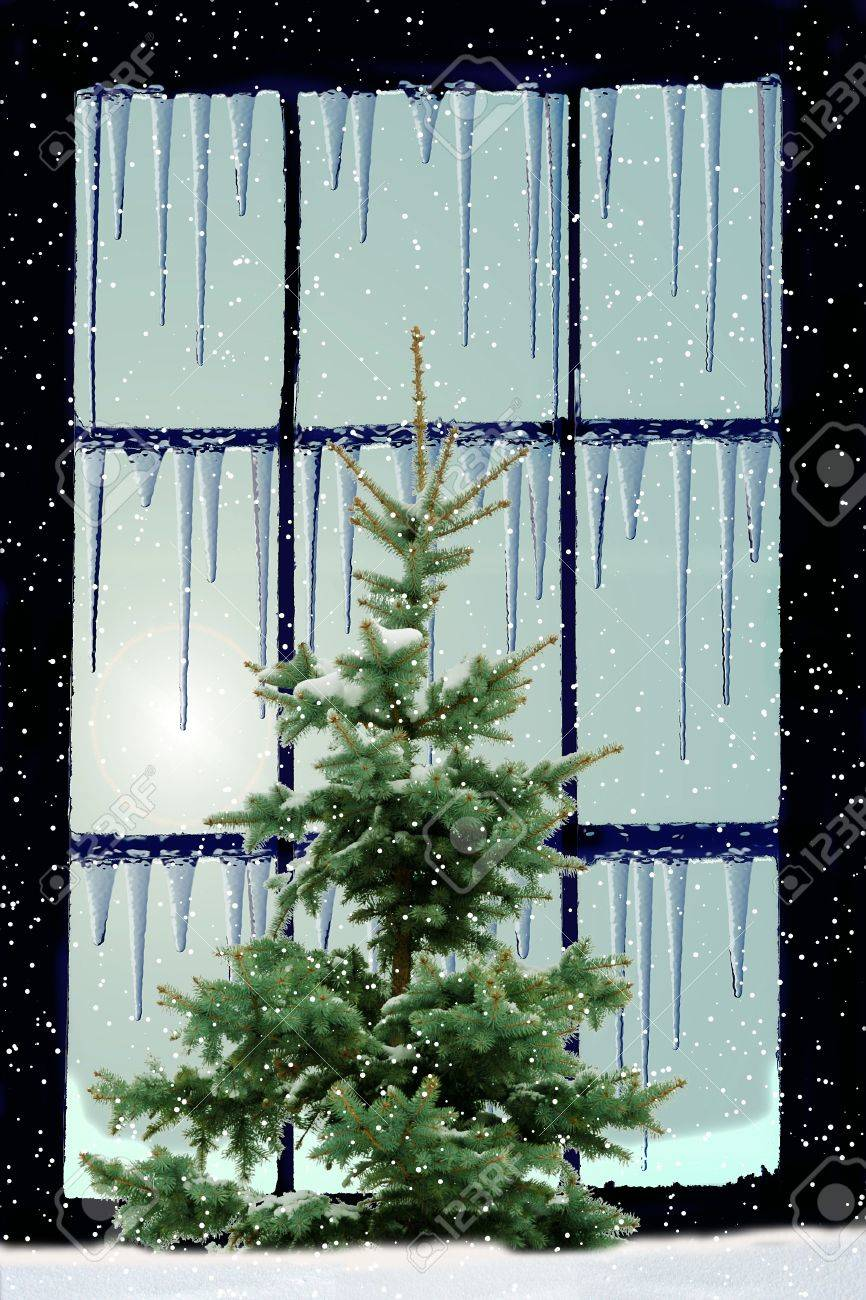 frozen window with icicles on the frame and green  fir tree outside Stock Photo - 8250294