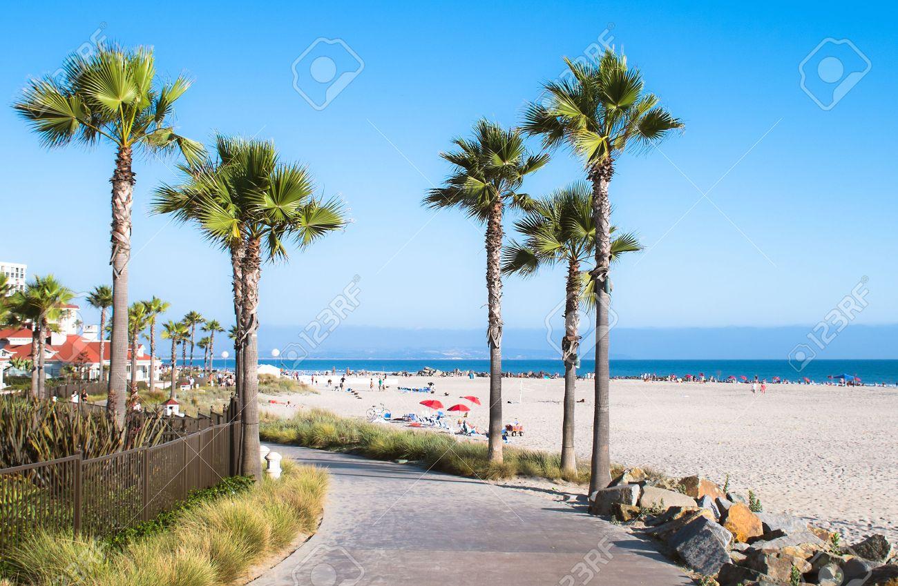 San Diego California Beach And Palm Trees USA Stock Photo