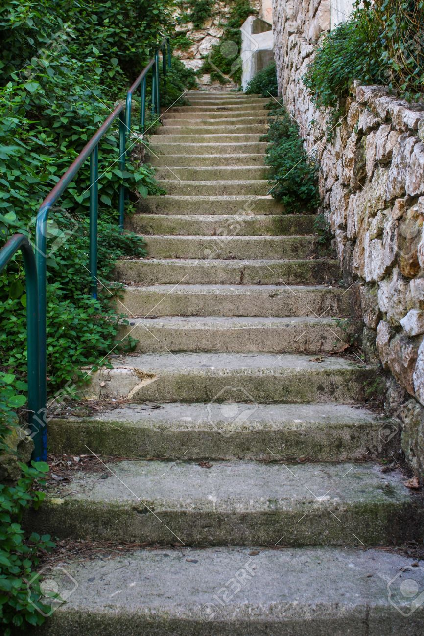 Outside Staircase With Green Plants And Stones Stock Photo - 13108426