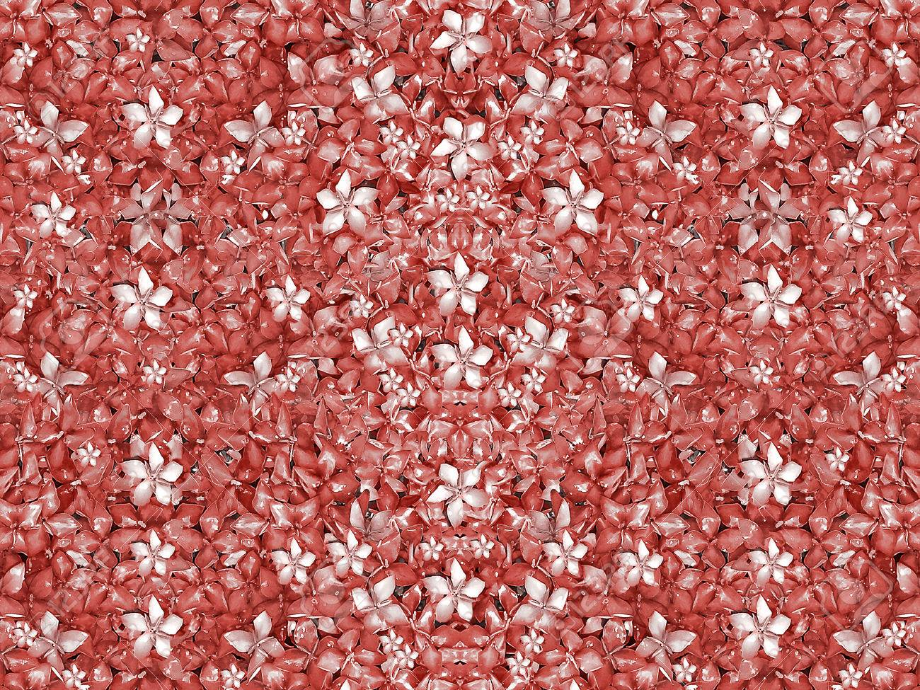 Digital style collage technique beautiful and unique flowers stock digital style collage technique beautiful and unique flowers motif pattern background in coral and white colors izmirmasajfo