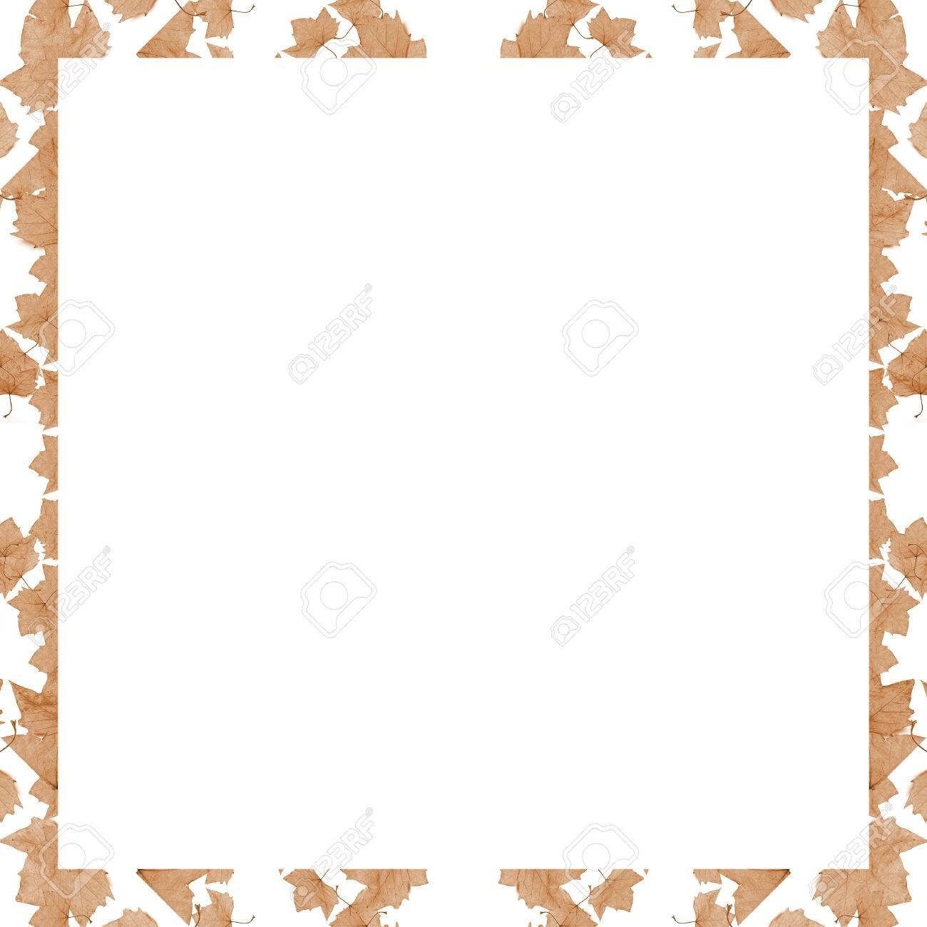 Fotograma De Fondo Blanco Con Diseño Floral Del Collage Fronteras ...