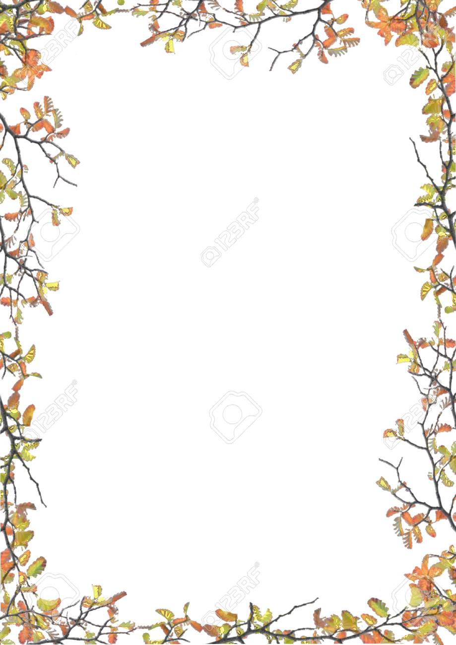 White Frame Background With Decorated Nature Flora Design Borders ...
