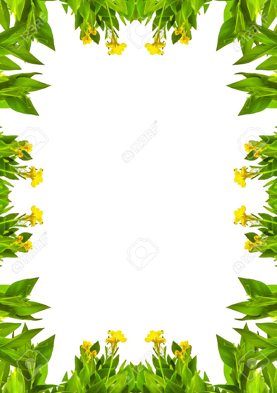 white frame background with nature decorated design borders stock photo picture and royalty free image image 82684635 123rf com
