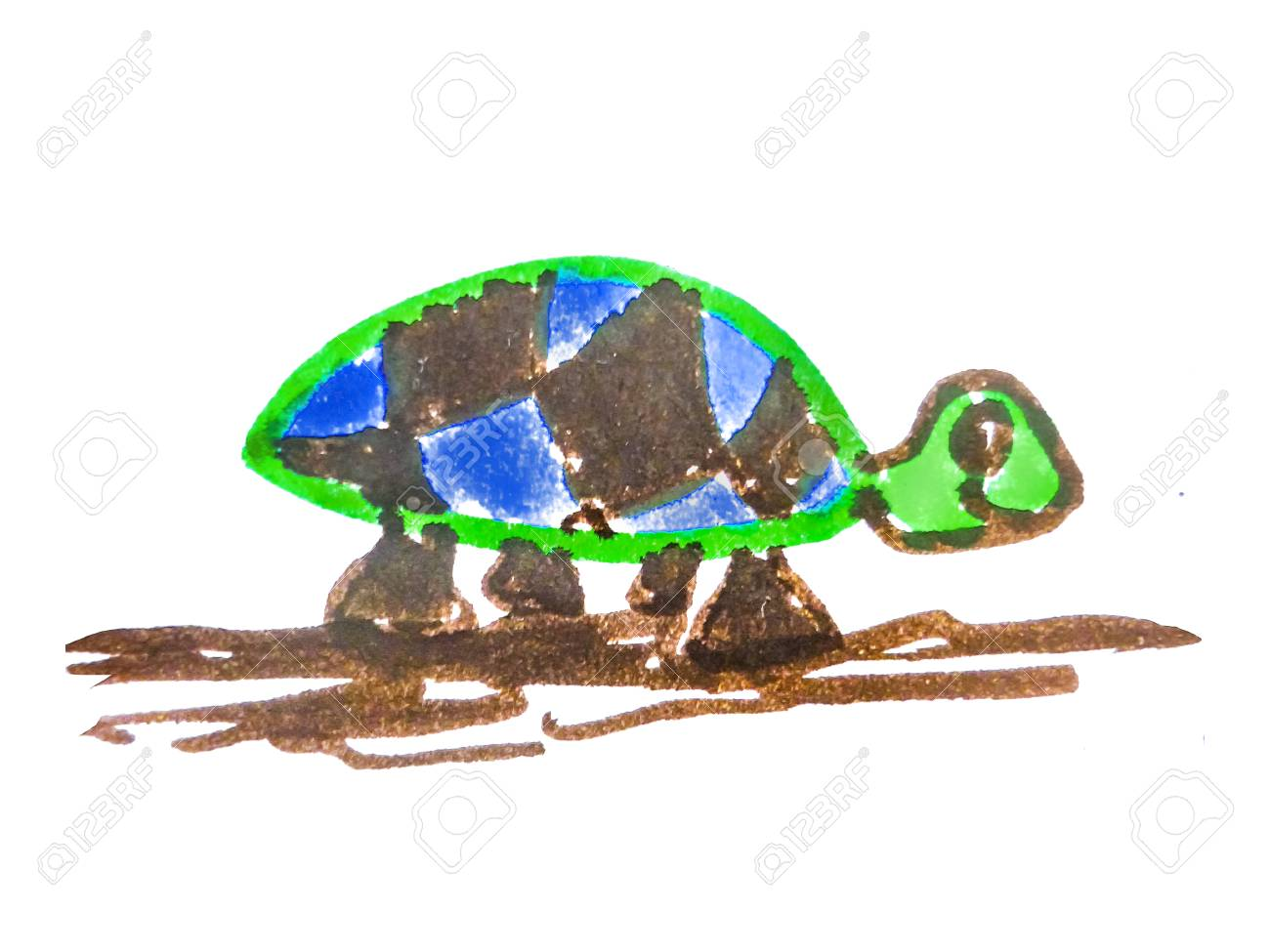 simple turtle drawing in vivid mixed colors isolated at white