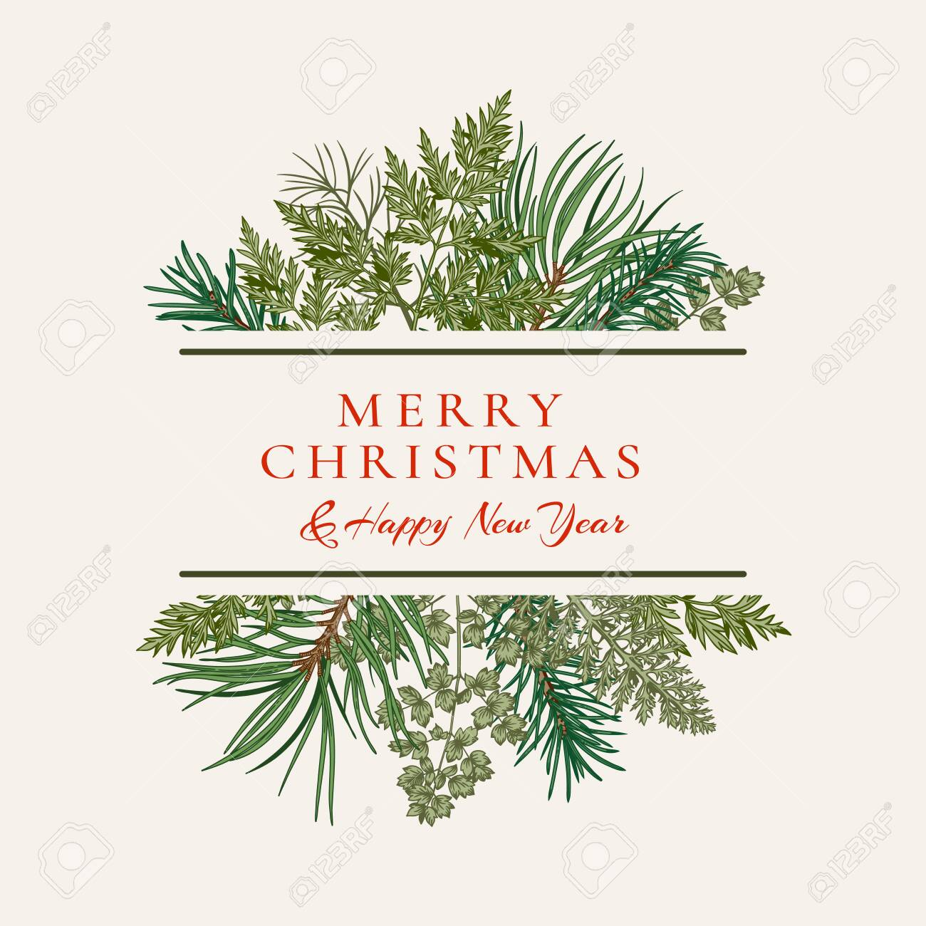Ð¡hristmas card with bouquet with fir and pine branches, fern and leaves. Botanical illustration. Vector holiday card. Greenery. - 155852798