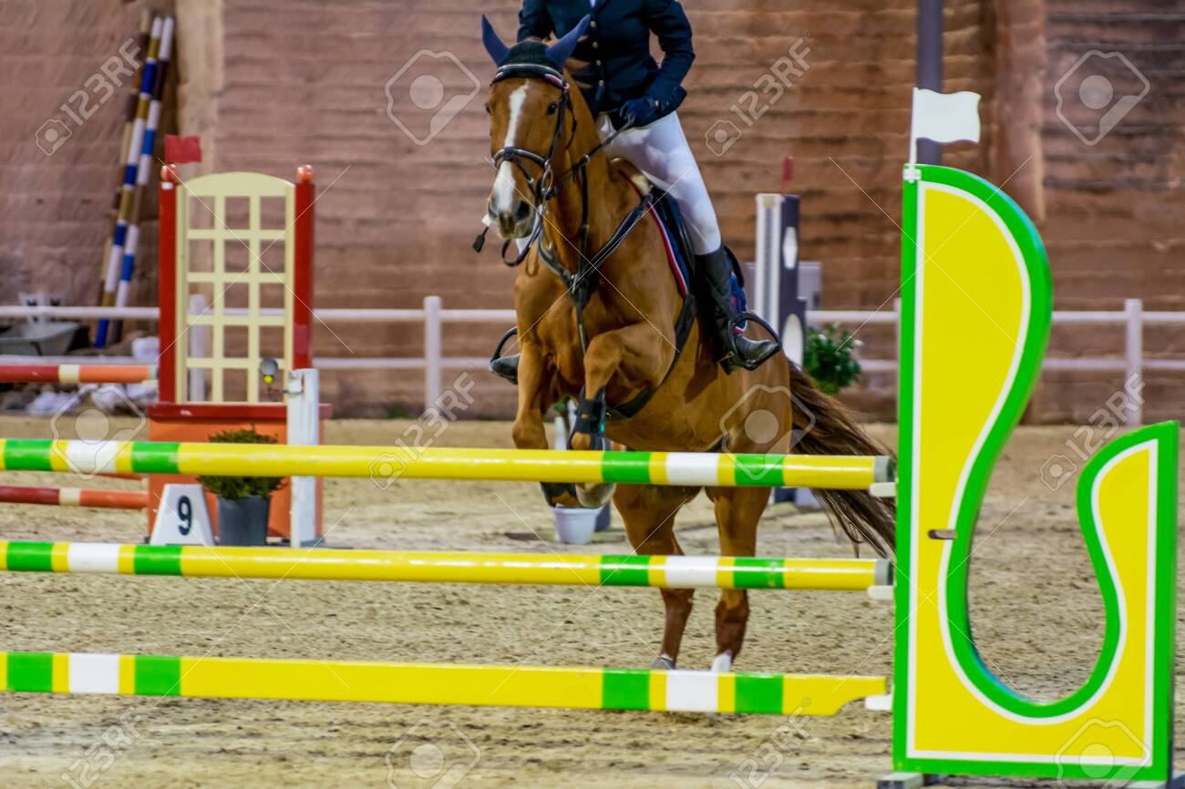 Horse Jumping An Obstacle During An Equestrian Competition On Stock Photo Picture And Royalty Free Image Image 141143269