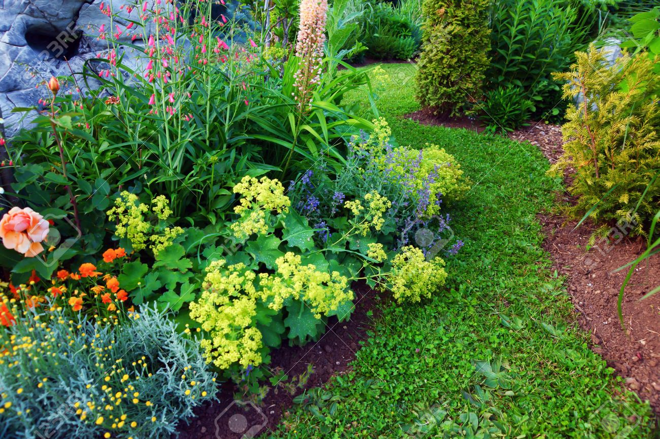 Beautiful garden Stock Photo - 21647116
