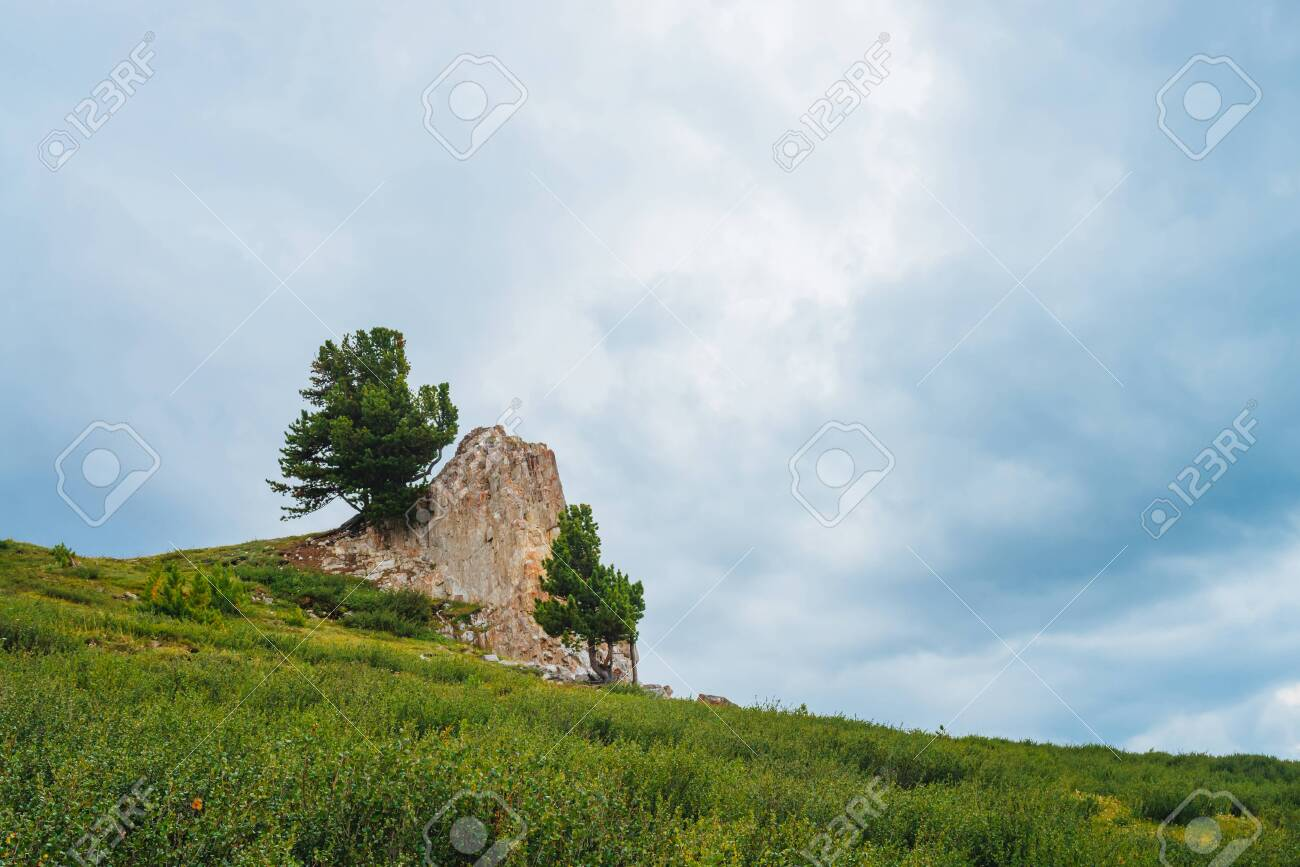 Landscape with big rocky stone on hill in highland under cloudy sky. Rock on mountainside with coniferous trees and rich vegetation. Wonderful scenic mountainscape. Amazing mountain scenery. - 122479100