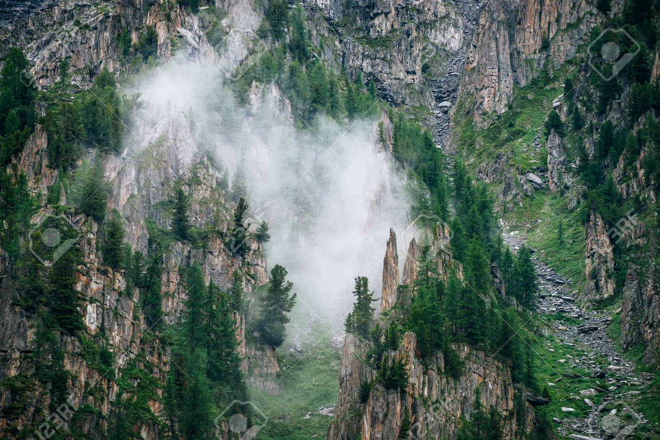 Sharp stones of rocky mountain with coniferous trees in dense fog. Low cloud near high rock with forest. Colorful foggy green landscape with rocks and trees in clouds. Steep slope with boulder streams - 170160571