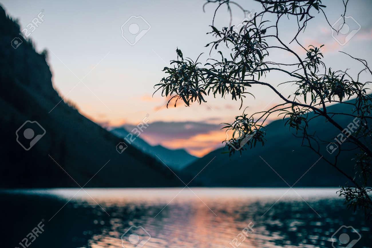 Beautiful silhouette of tree branches on blurry background of alpine lake at dawn. Vivid calm water of mountain lake in sunrise colors in blur. Amazing scenery with colorful water in sunny morning. - 170494581