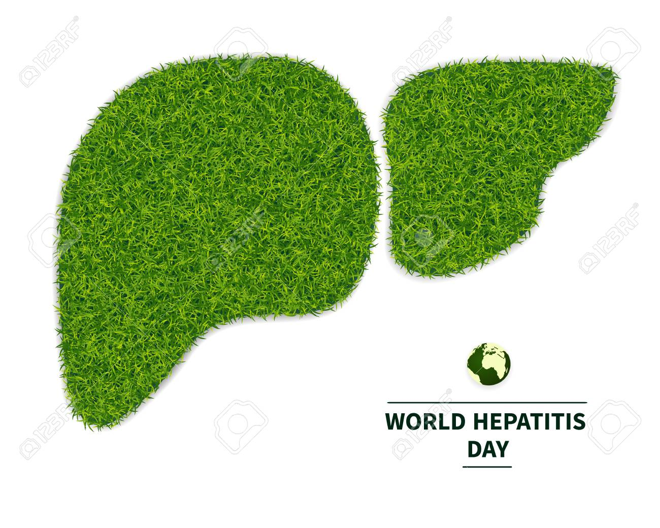 World Hepatitis Day. Symbol of a healthy liver, from a green grass. personifies the health of the body. Ecology in the fight against hepatitis. Isolated on white background, with text, vector illustration. - 101622075