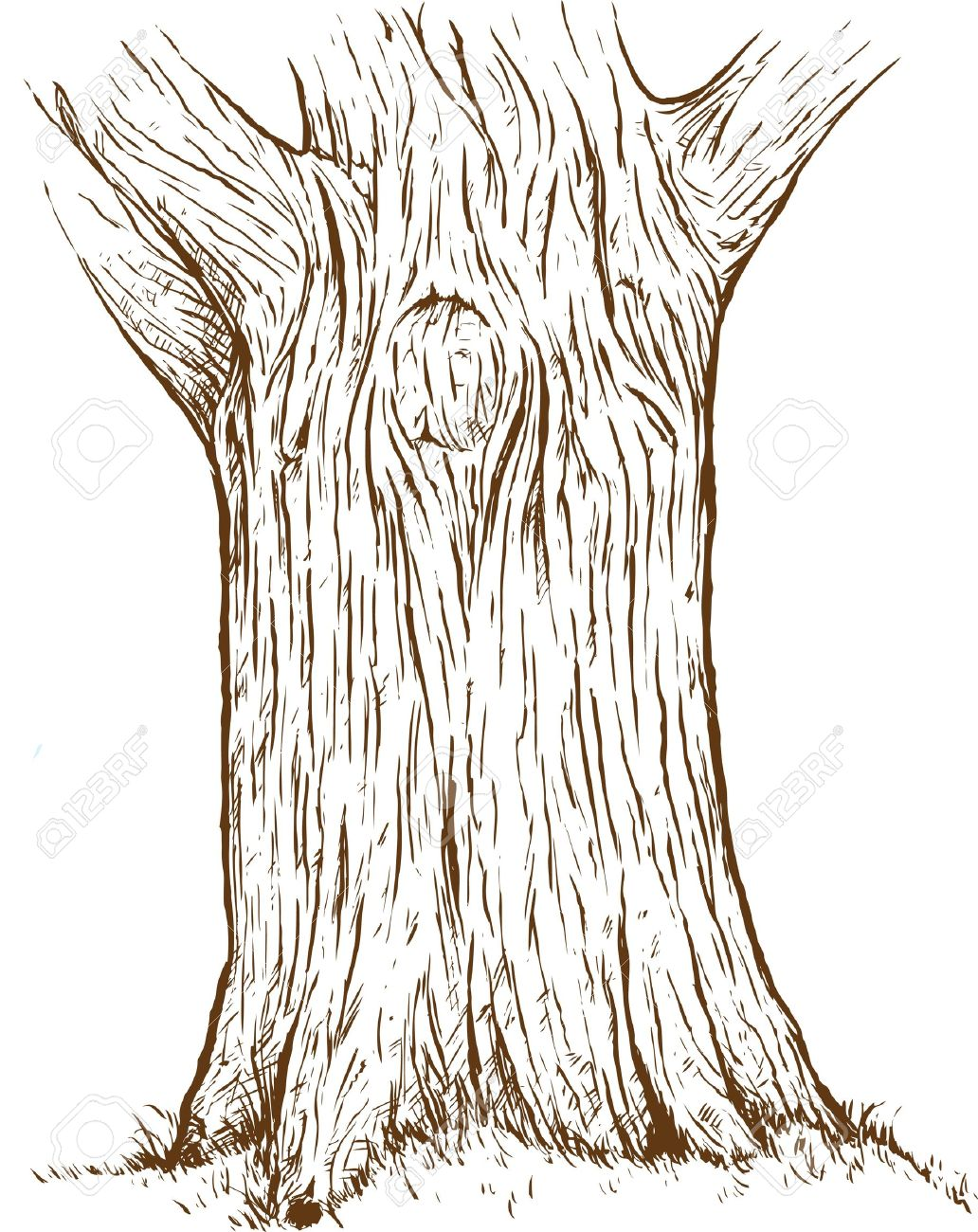 Tree Trunk Royalty Free Cliparts Vectors And Stock Illustration