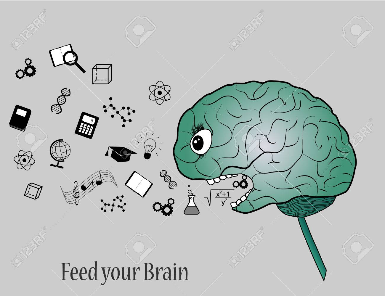 Feed your brain with knowledge  Simple illustration of brain