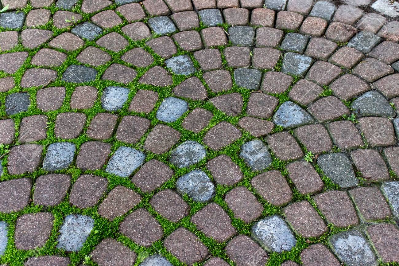 Decorative Garden Pavement Tiles With Grass Growing In Grooves ...