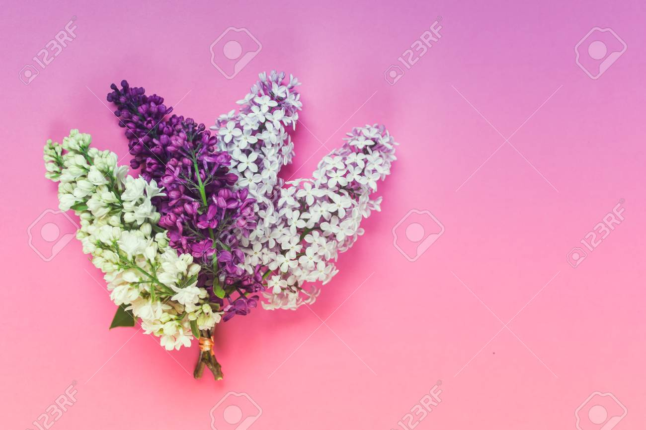 Three Types Of Lilac Flowers In A Bouquet - Pink, White And Purple ...