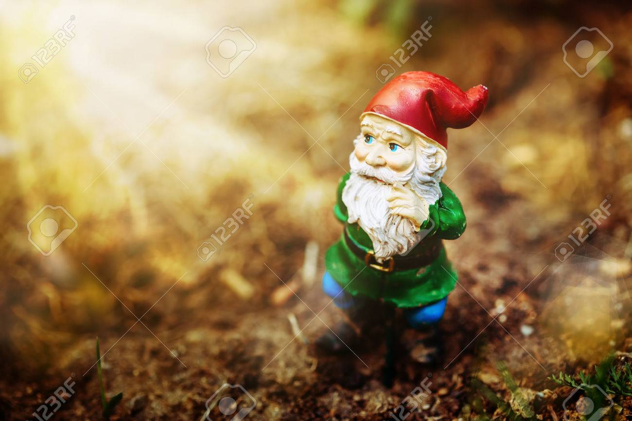Dreamy Garden Dwarf In Sun Light Stock Photo, Picture And Royalty ...