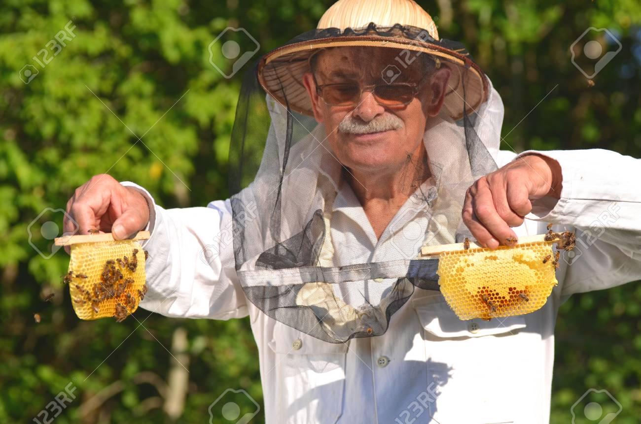 apiculteur 72