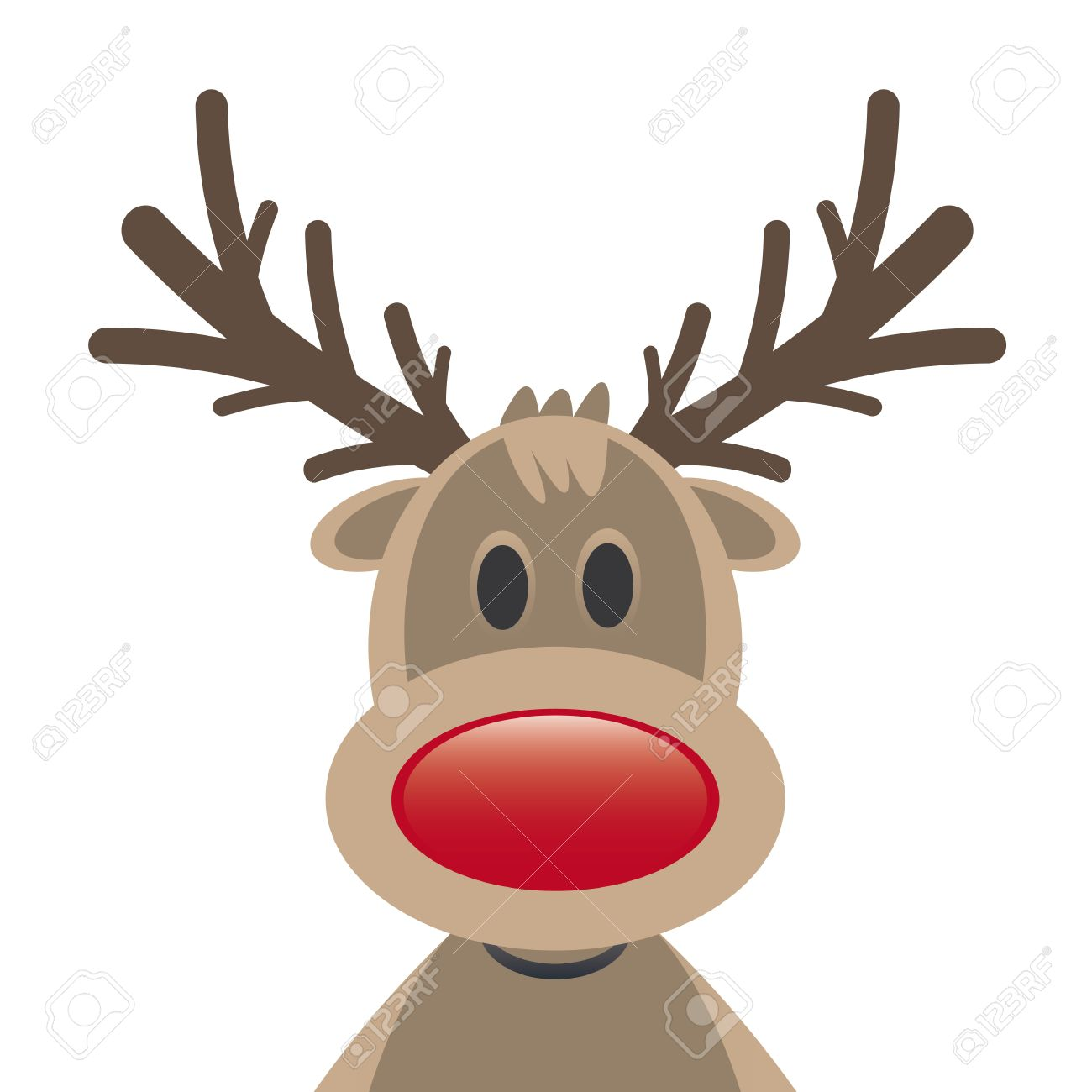 rudolph reindeer red nose on white background stock photo picture