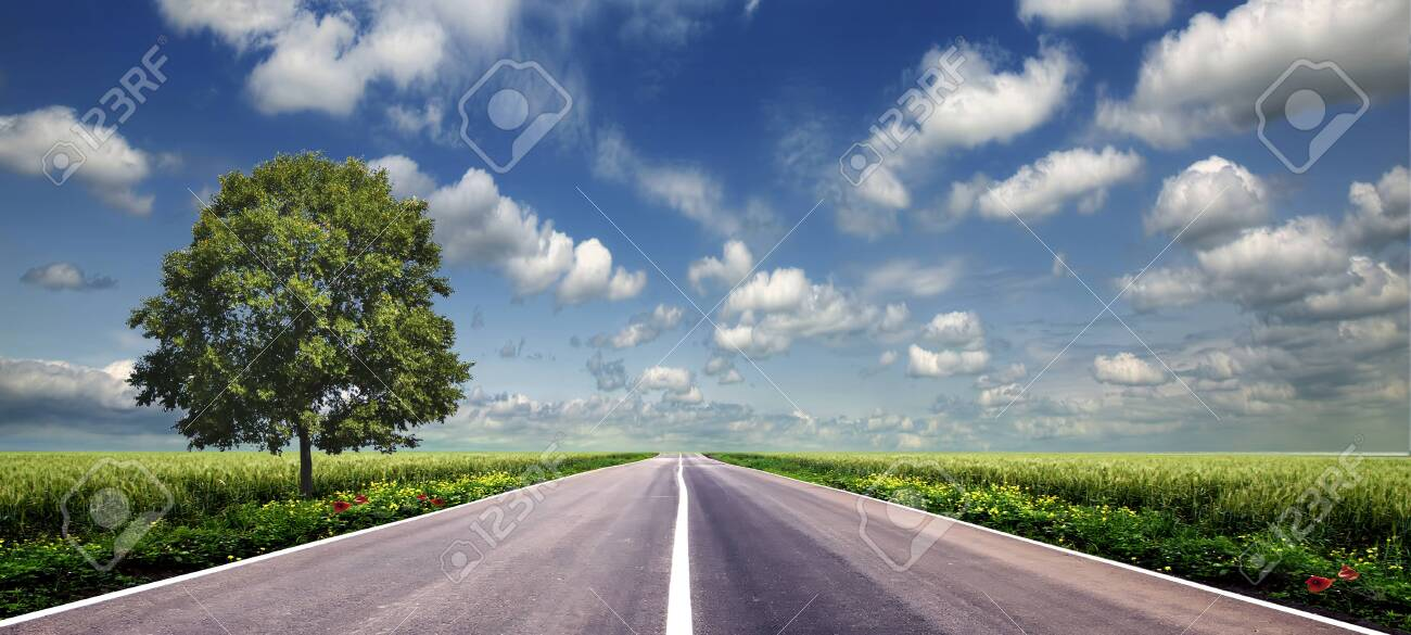 green field and road over blue sky - 130490672