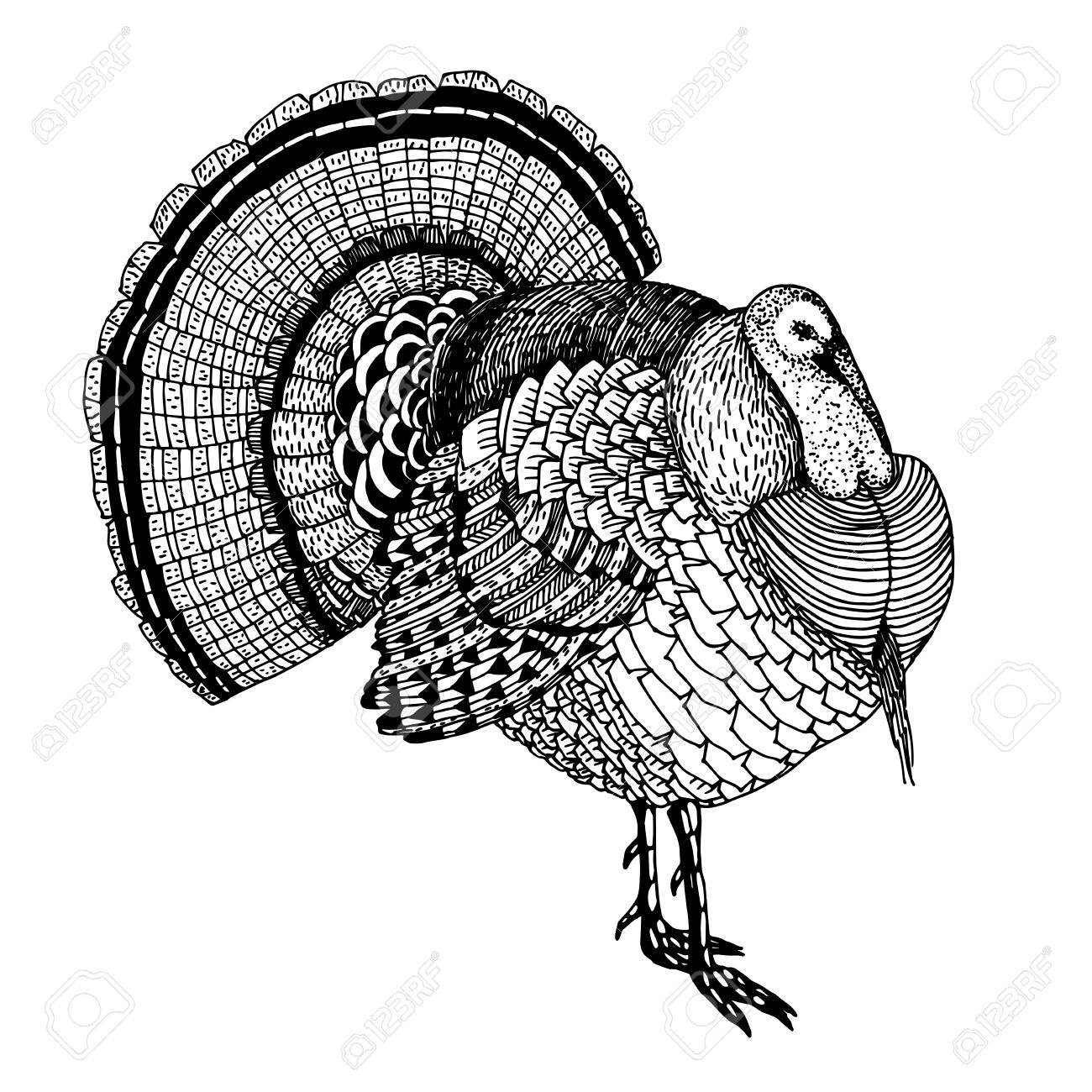 abstract hand drawn vector illustration with a turkey isolated