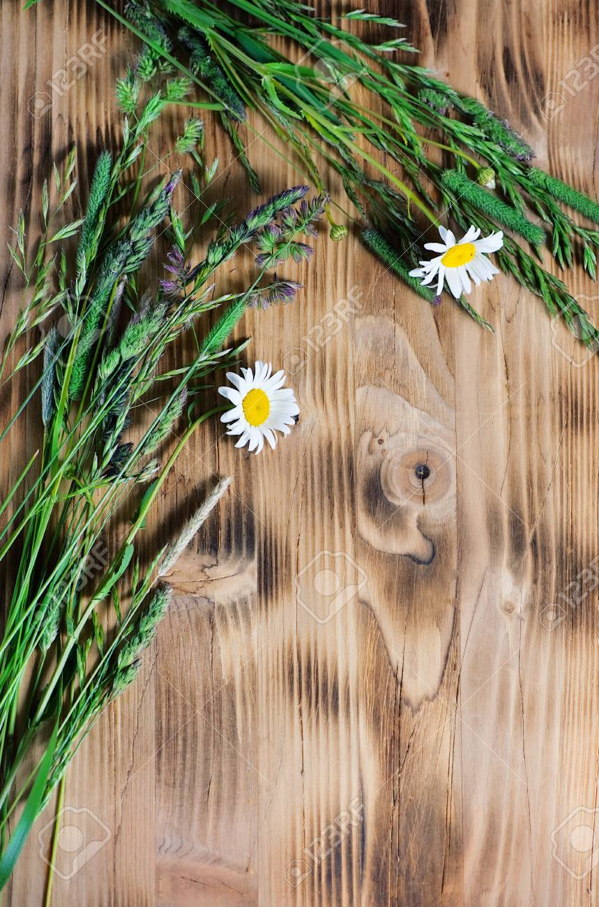 Herbs and camomile on the wood background Stock Photo - 14118058
