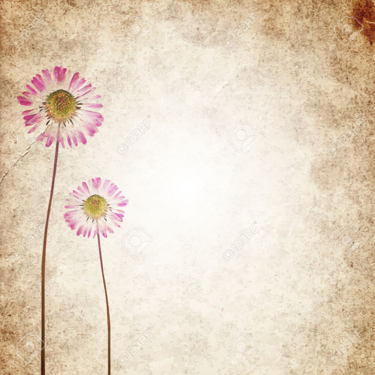 Old Vintage Paper Texture Background With Dry Flowers Royalty Free