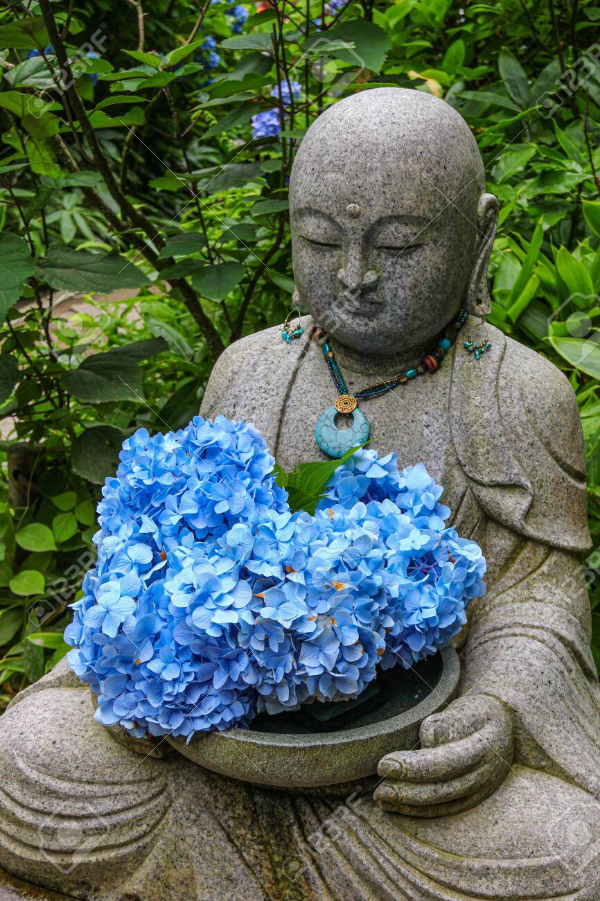 A buddha statue at a temple, holding fresh hydrangea flowers. - 149445865