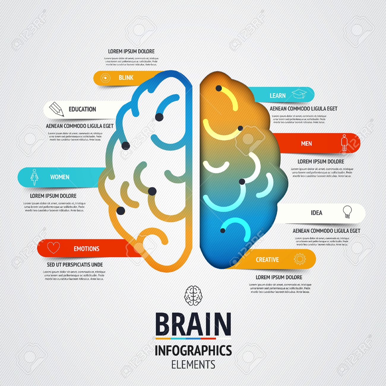 creative brain infographics design. inspiration concept modern