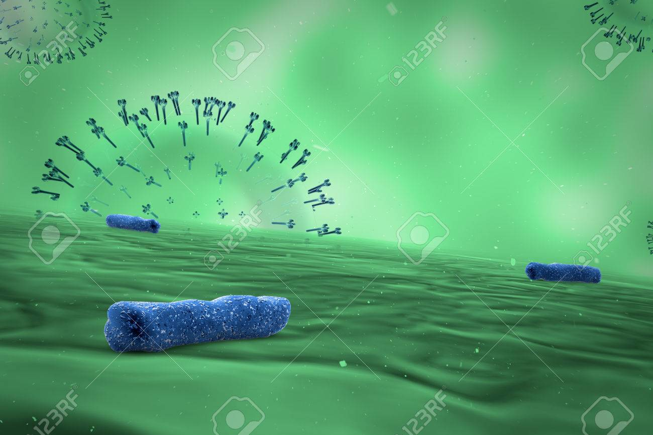 Medical illustration of the Bacteria - 43040990